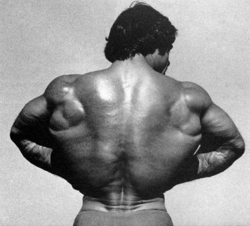 Frank Zane Hd Resolution Wallpapers Best Thing Amazings