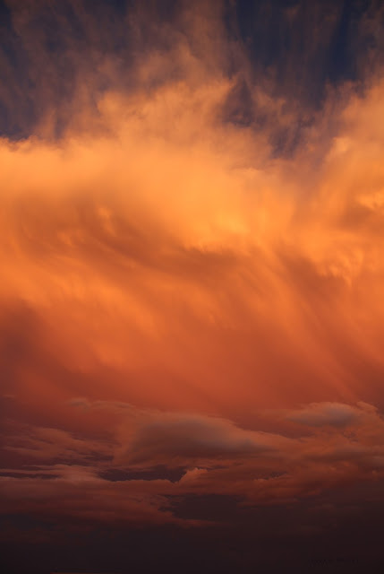 clouds, sky, photography, sarah myers, sunset, evening, desert, weather, majestic, twilight, digital, blue, orange, skies, photograph, beauty, large, vast, skyscape, landscape, cloudscape, vivid, autumn, fall, storm, thunder, cumulus, impressive, bright, night, Sonora, tide, waves, soft, gentle, big