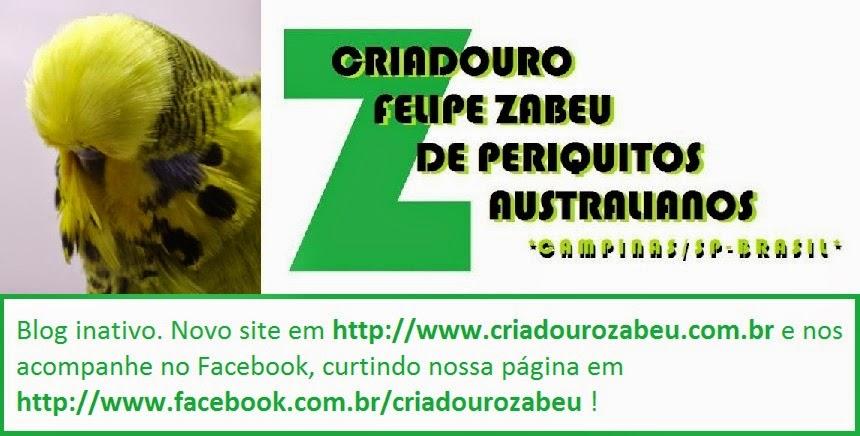 FELIPE ZABEU - PERIQUITOS ONDULADOS AUSTRALIANOS PADRÃO EXPOSIÇÃO