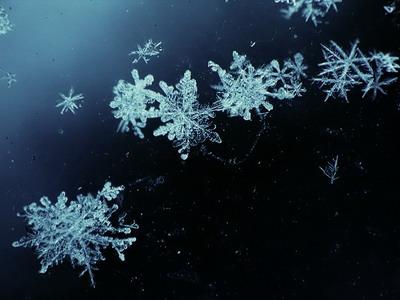 Первый снег новосибирцы могут увидеть уже в сентябре