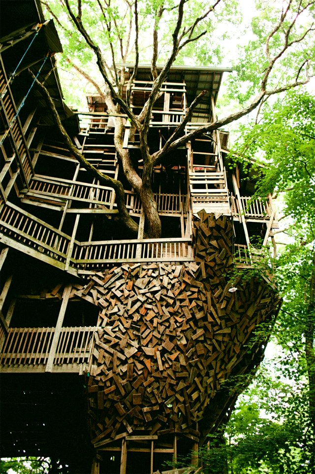 The flying tortoise the world 39 s biggest treehouse - Biggest treehouse in the world ...