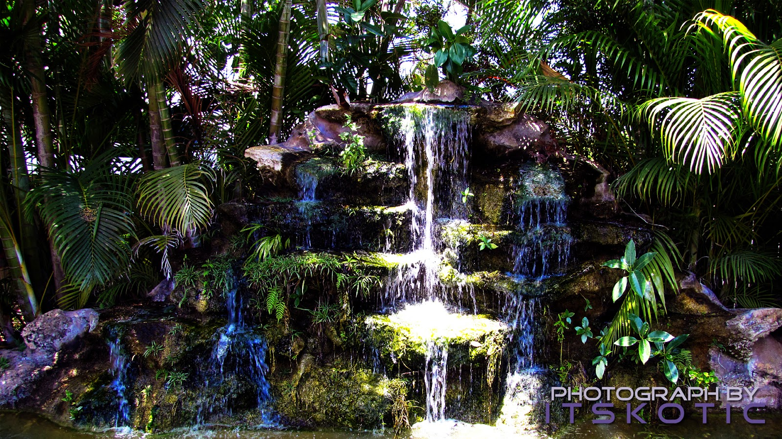 Beautiful Waterfall Florida Everglades Picture image
