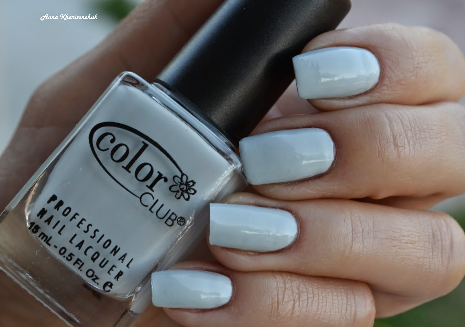 Color Club Silver Lake 1000