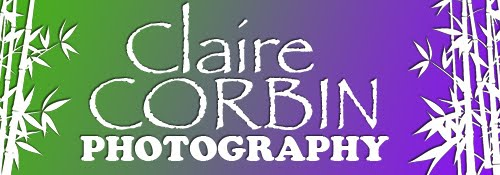 Claire Corbin Photography