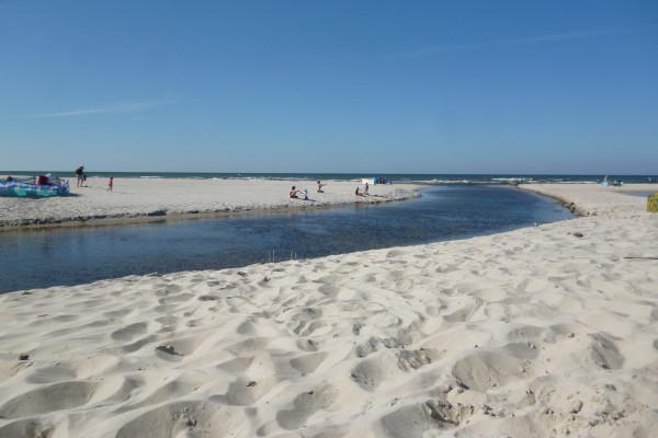 Spływ kajakowy rzeką Piaśnicą do morza