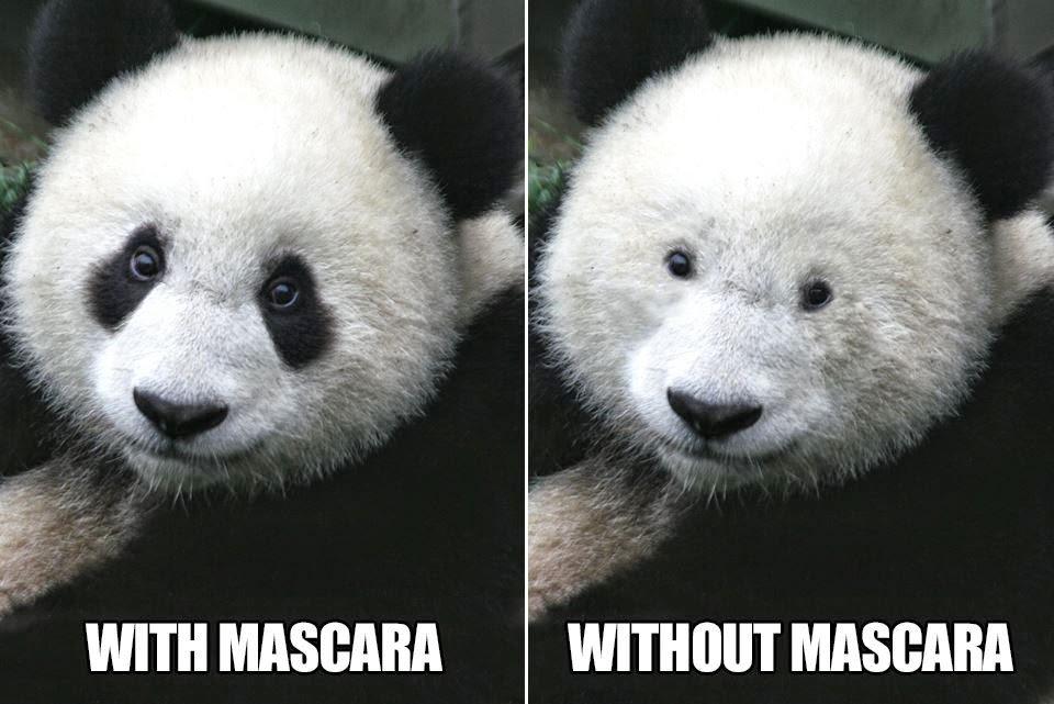 rahsia panda