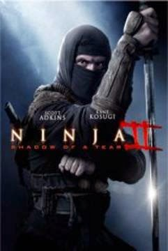 descargar Ninja II: Shadow of a Tear
