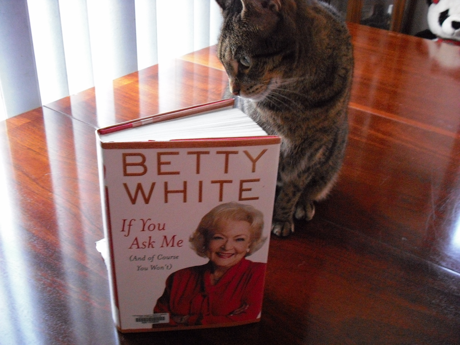 Betty White If You Ask Me Youtube