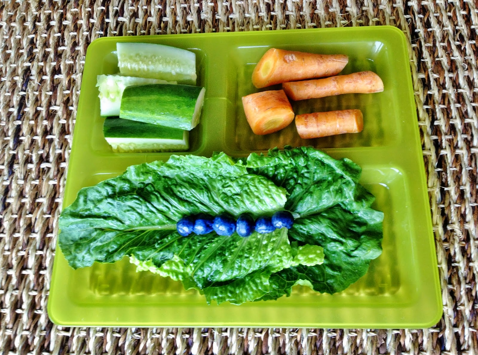 Guinea Pig breakfast: romaine lettuce, blueberries, carrots, cucumber.