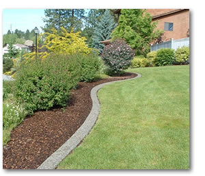 Lawn Edging Ideas And Methods