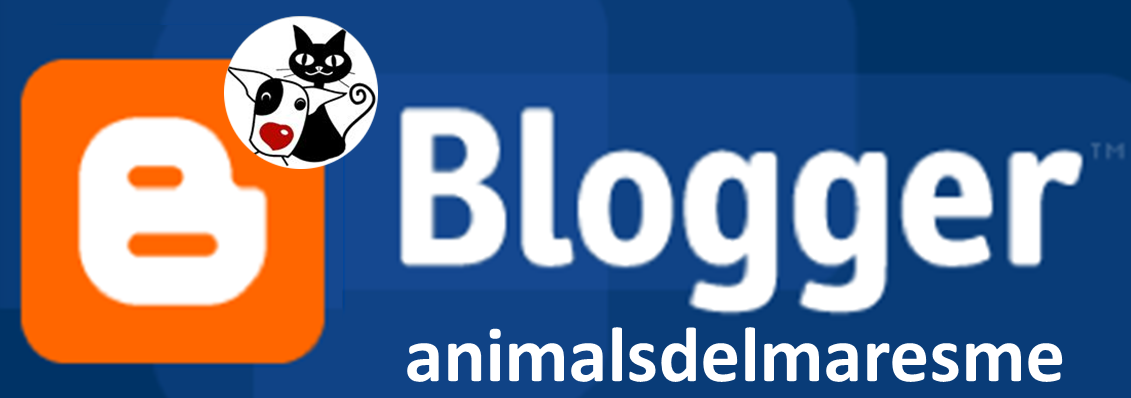 Inici blog