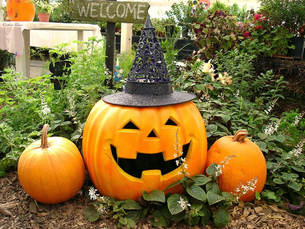 Have a Spooky Hallowe'en!