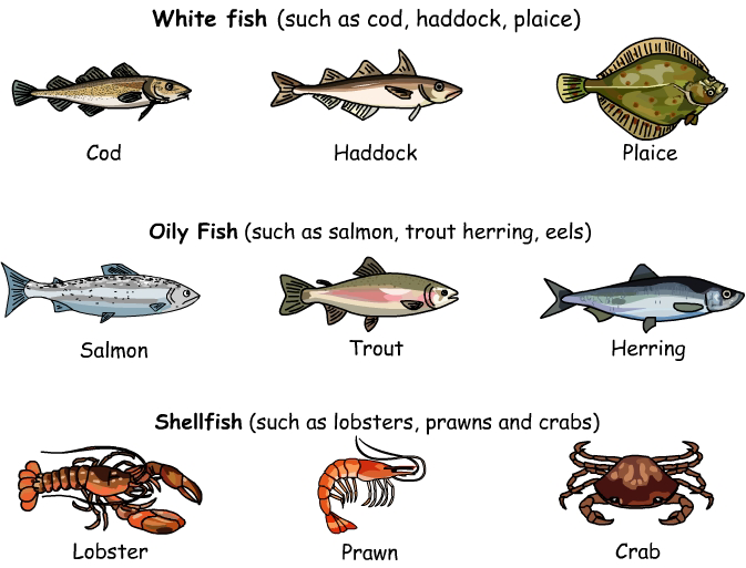 Learn english and spanish aprende ingl s y espa ol food for What is a vegetarian that eats fish