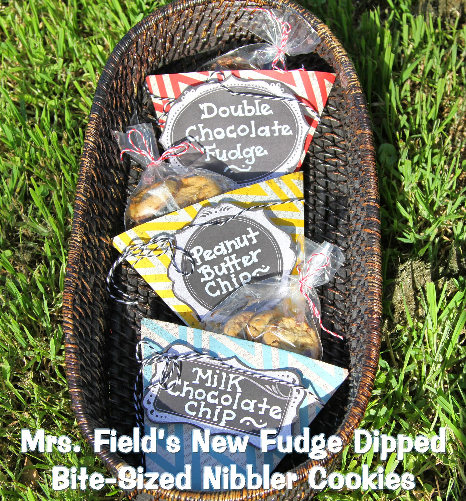 Mrs. Field's New Fudge Dipped Bite-Sized Nibbler Cookie Flavors- soft-baked & addicting!