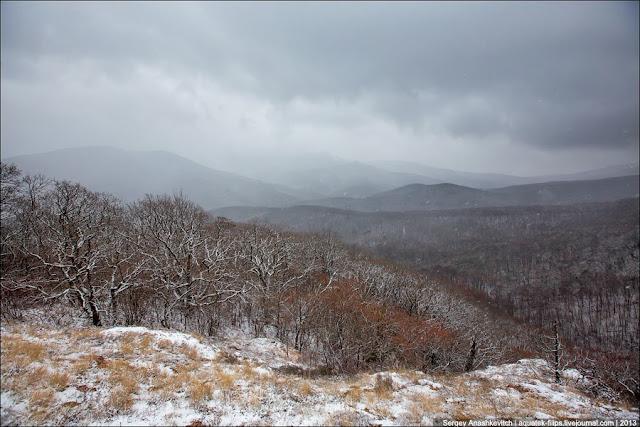 Высота около 900 метров над уровнем моря. Здесь небольшой снежок и небо выглядит уже не сплошным свинцовым, а видно, что это рваные снежные тучи. Уже не так тихо, как внизу. По-настоящему громко стало минут через 15, когда мы поднялись на само плато.