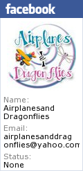 Airplanes and dragonflies