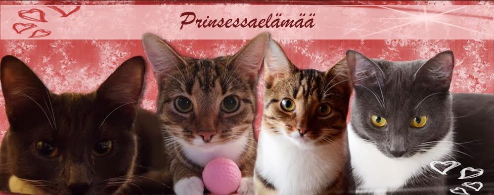 Prinsessaelämää
