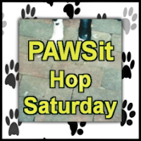 PAWSit with Dog Pawsitive Tidbits