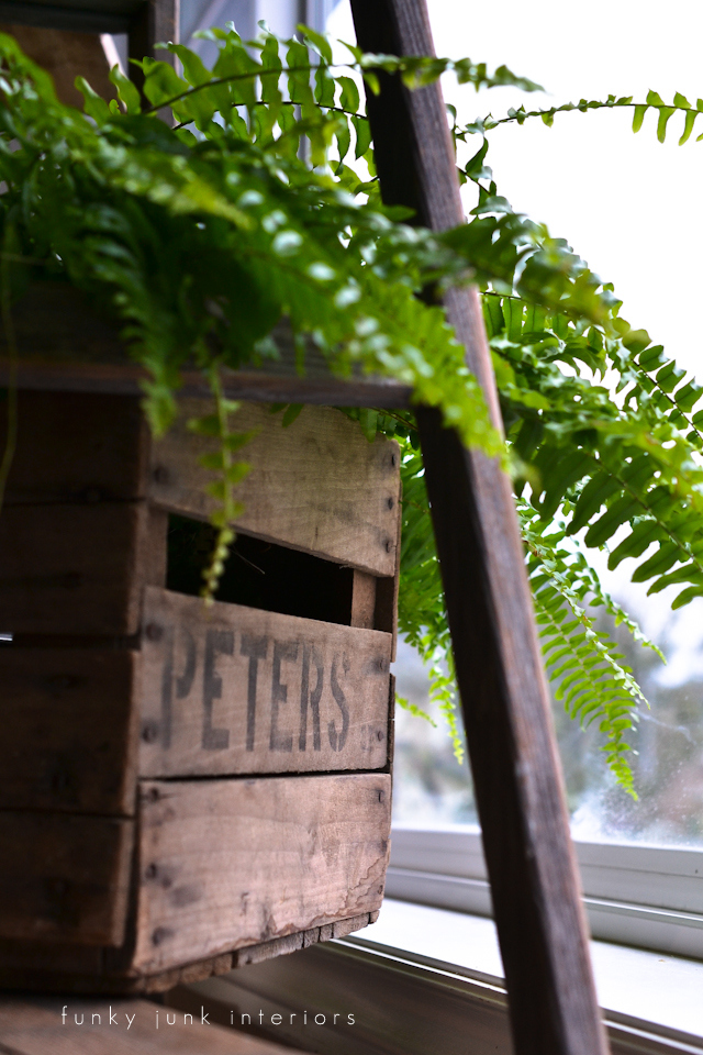 Old crate plant holder on a plant ladder via Funky Junk Interiors