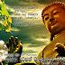 Have a peaceful Vesak - Gossip of Lanka