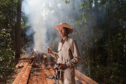 Chut Wutty burns illegal timber in Prey Lang forest