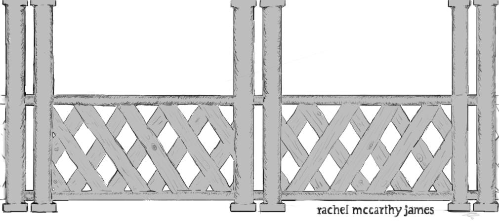 Rachel McCarthy James