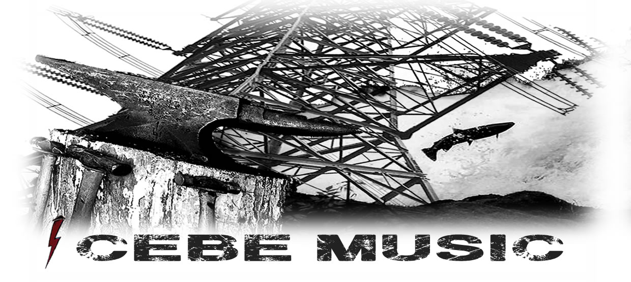 CEBE MUSIC: Royalty Free Acoustic Instrumental Music