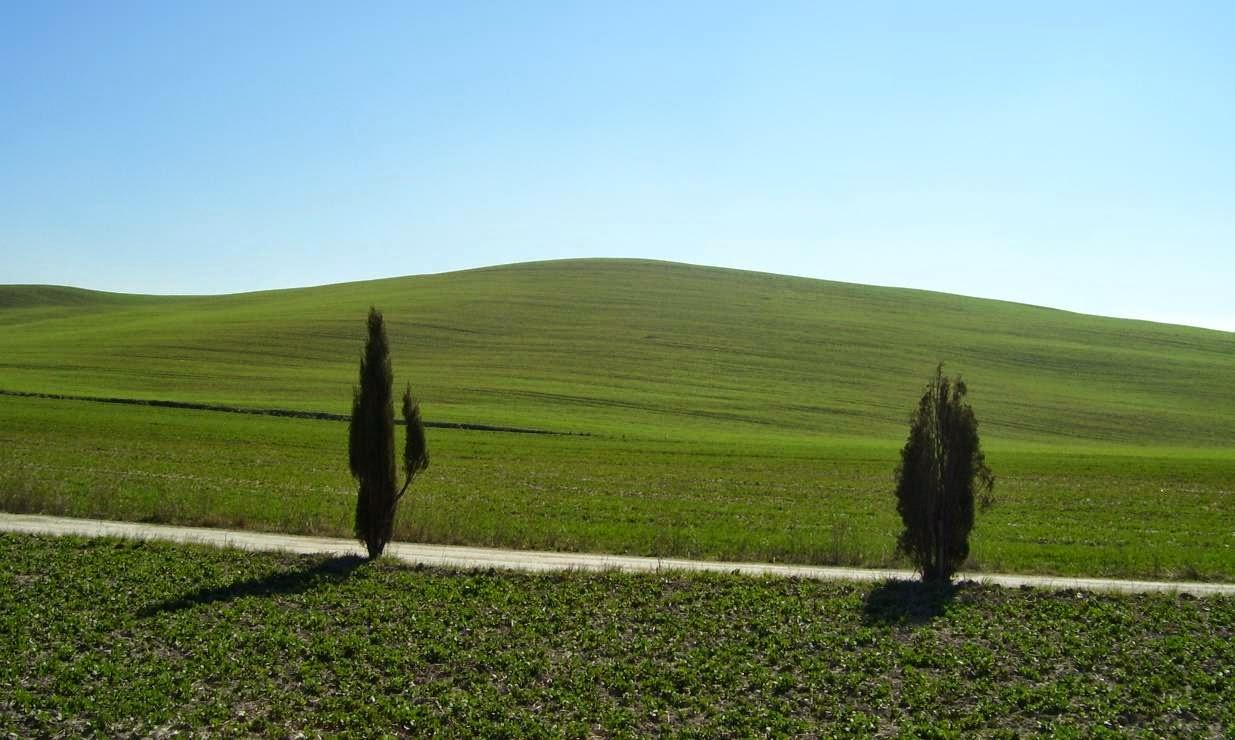 Paisaje italiano, Toscana