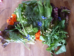 Edible leaves and flowers