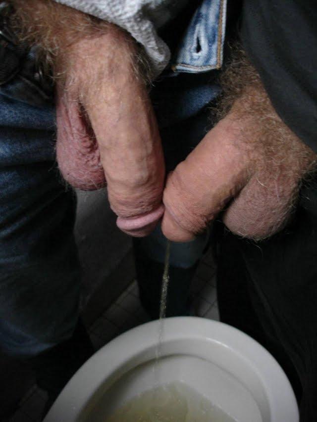 verga pee