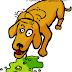 Radang Lambung pada Anjing dan Kucing (Gastritis Hewan Kecil)