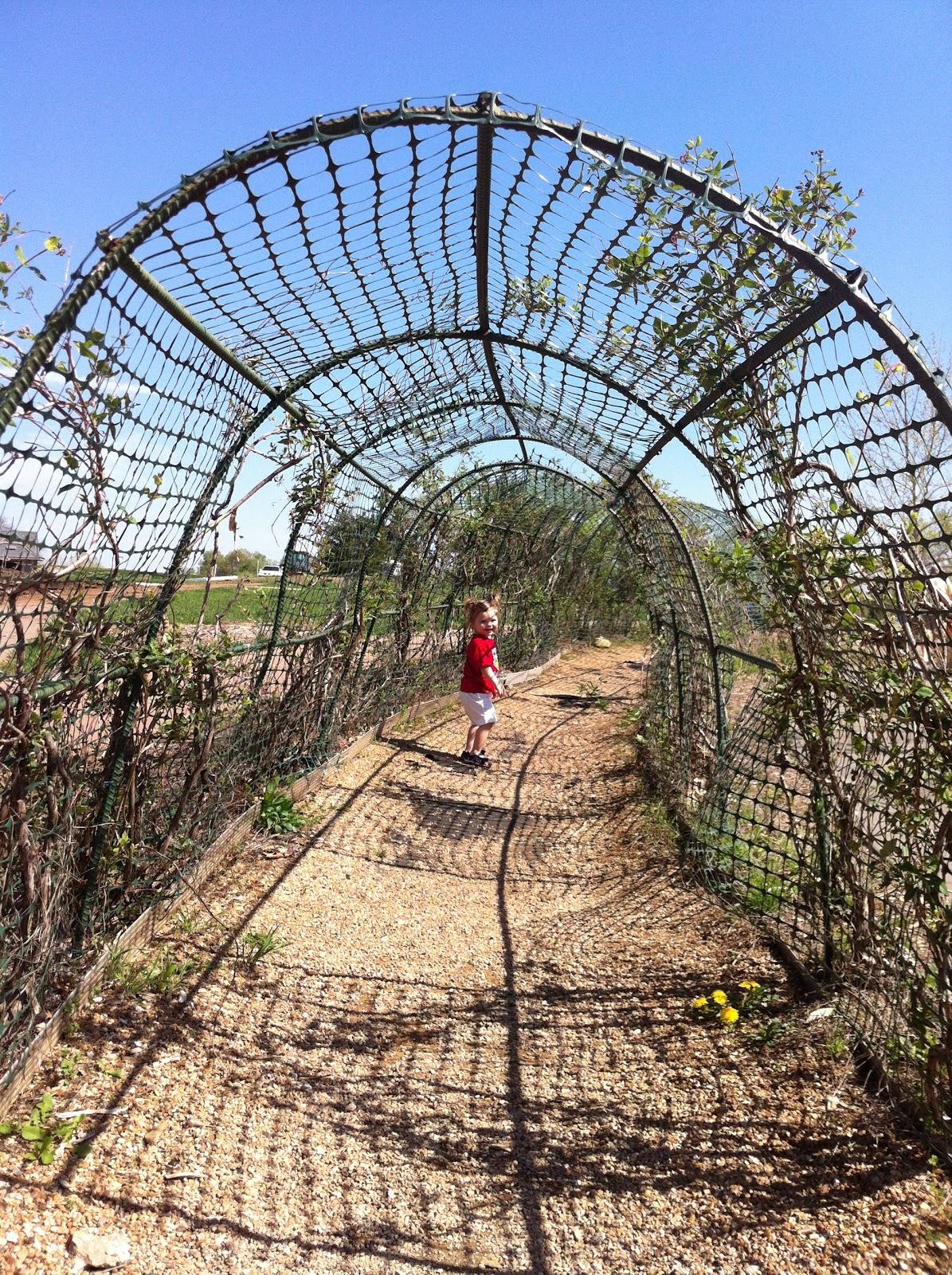 The Brighter Writer: The Overland Park Arboretum and Botanical Gardens