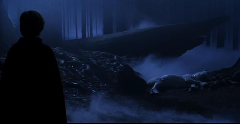 Harry Potter. El Bosque Prohibido.