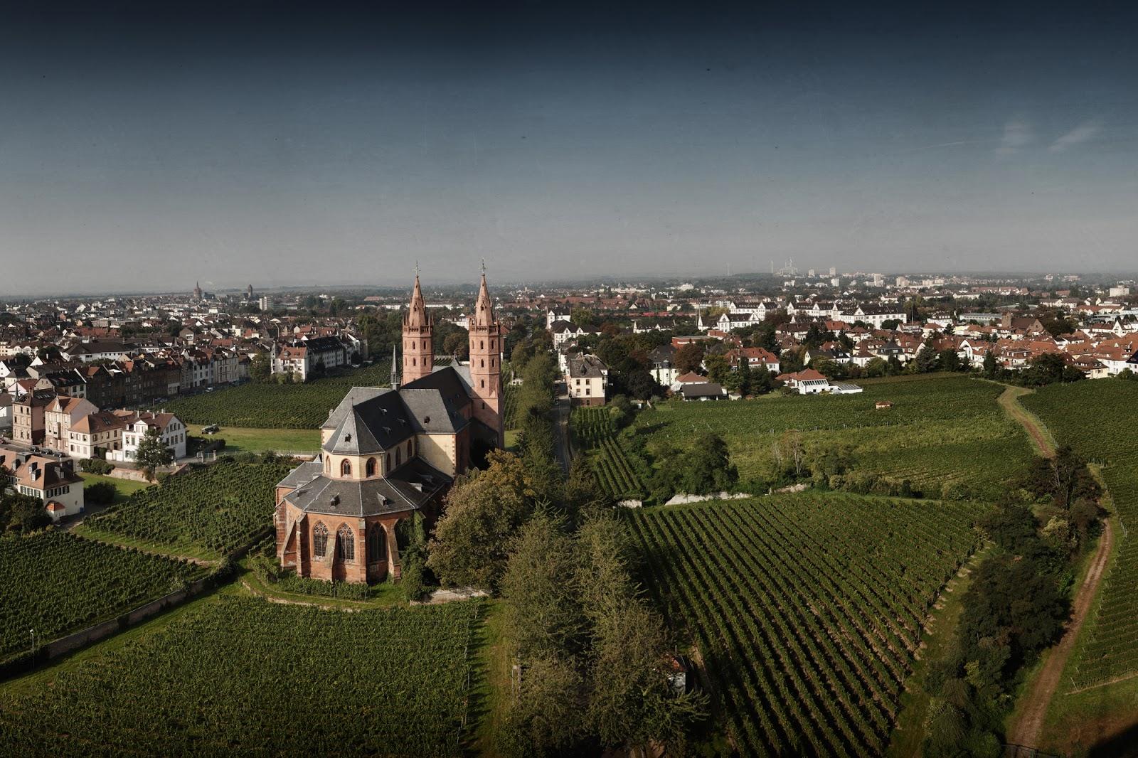 德國萊茵黑森生產「瑪丹娜.聖母之乳」(Liebfrauenmilch Madonna)白葡萄酒的P. J. Valckenberg GmbH酒莊。