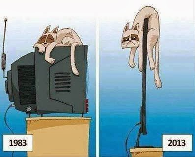 Funny Cat sleeping on Television, 1983 cat sleeping 2013 cat sleeping pics, Funny Television ads, Old TV vs new TV, big TV vs Slim tv, Compare LCD tv, LED tv, Latest model smart tv, Funny Pics, Funny animal pics,1983 vs 2013 Television - Funny Comparison