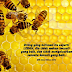Orang Beriman bagaikan Lebah