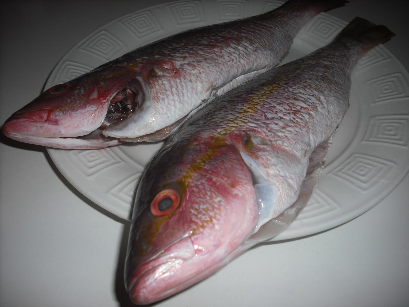 how to make fish chowder