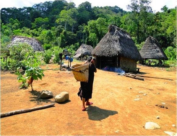 Comunidades nativas del VRAEM