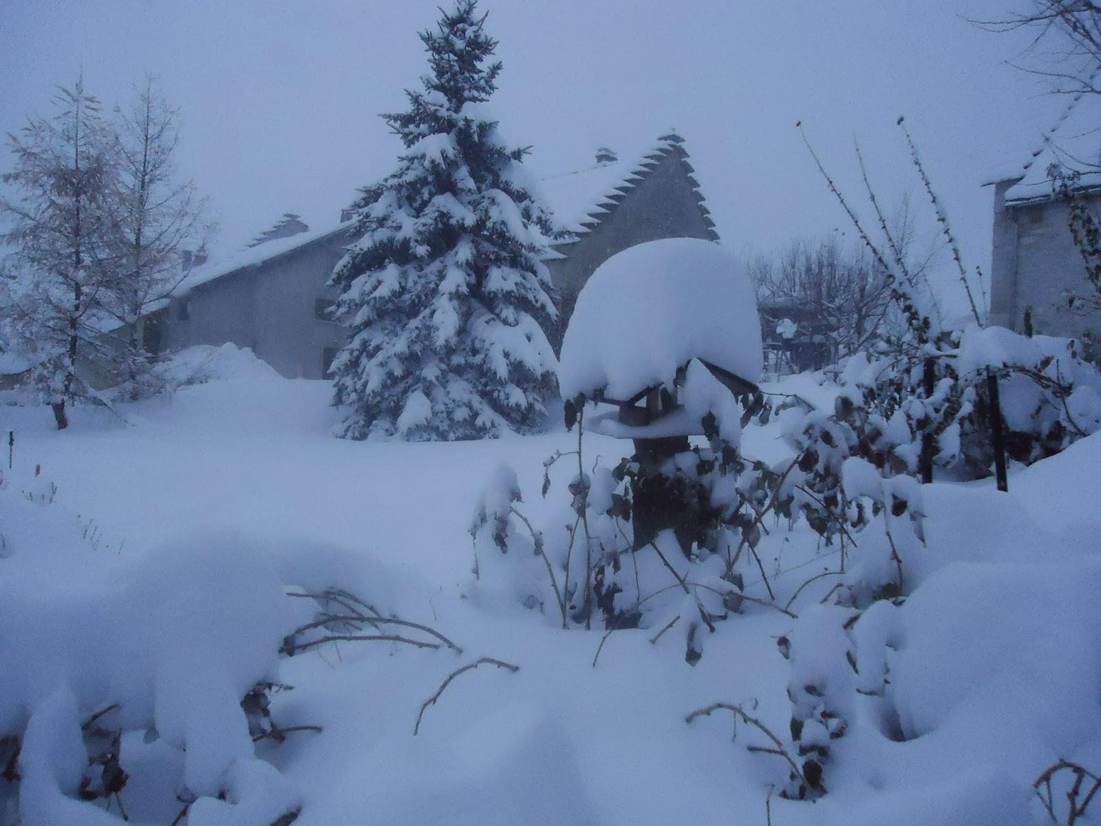V g tal en vercors la couverture d 39 hiver est arriv e for Couverture plante hiver
