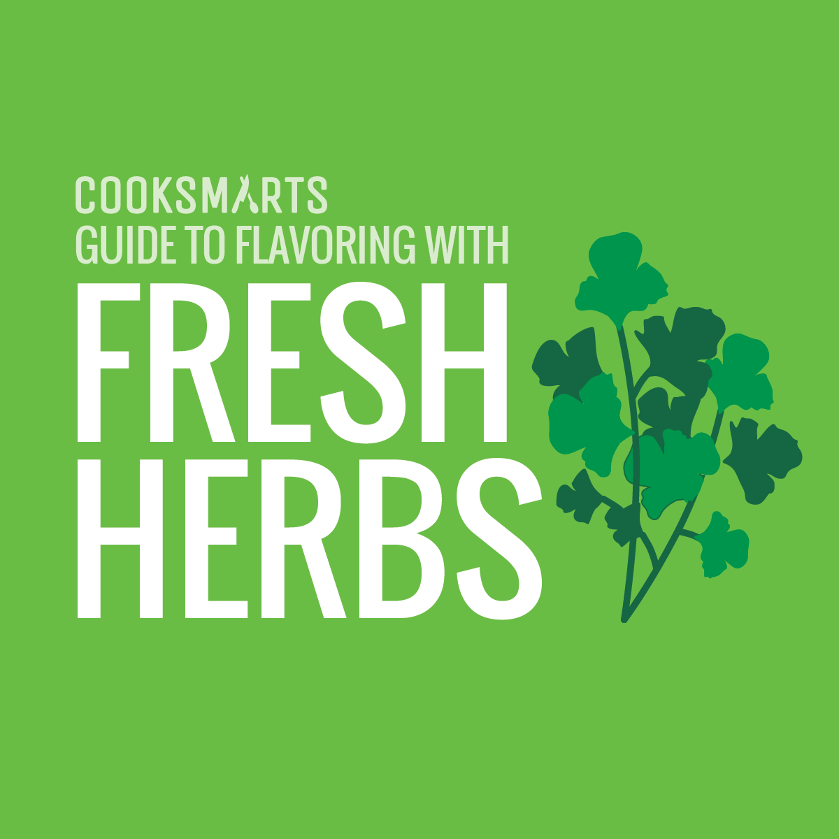 Chefs buying fresh herbs - I Recently Wrote An Article On The Ultimate Guide On Flavoring With Spices Here At Chef Jay S Kitchen I Hope It Was Able To Help You Create Even More