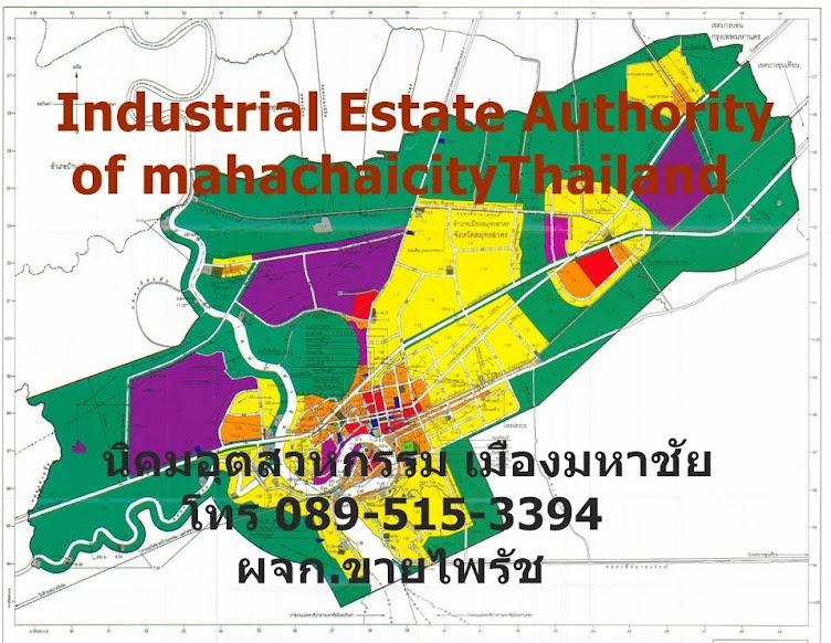 D-HOUSE THAILAND  ส่งเสริมการทำธุรกิจ อสังหาฯ
