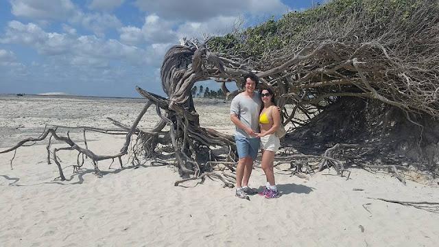 Lua de mel - Jericoacoara. Ceará, bodas de papel, 1 ano de casados, viagem, econômica, praia, sol, romântica, árvore da preguiça