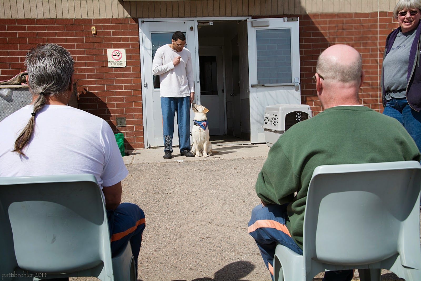 A tall, african american man is standing in the distance in the middle of the photo, near a set of double doors, one of which is open. He is wearing the prison blue pants and a long sleeved white t-shirt. He is looking down at a yellow lab which is sitting on his left side looking back at him. The puppy is wearing the blue Future Leader Dog bandana. The man's right hand is in a fist at his chest and his left hand hanging at his side is holding the leash. In the foreground are two men sitting in light blue plastic chairs, facing hte first man. The man on the left is wearing a white t-shirt and has a ponytail, his hair is grey. The man on the right is wearing a green sweatshirt and is bald. There is a woman standing far on the right, half out of view. She is wearing dark glases, blue jeans, a grey t-shirt and purple hoodie that is unzipped. It is very sunny out.