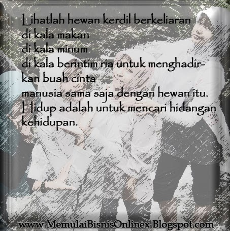 Bingkai-Bingkai Foto,Wanita Indonesia, Hijabers Indonesia