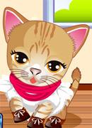 Костюмы для кошки - Онлайн игра для девочек