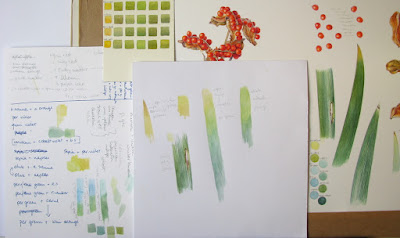 Artist's desk with colour notes and watercolour studies Shevaun Dohertyu
