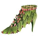 Zapatos de Hadas