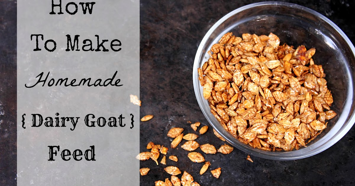 To Sing With Goats: How To Make Homemade Dairy Goat Feed