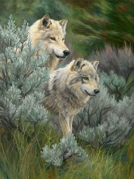 Homo Homini Lupus // "Ο άνθρωπος λύκος για τον συνάνθρωπό του"
