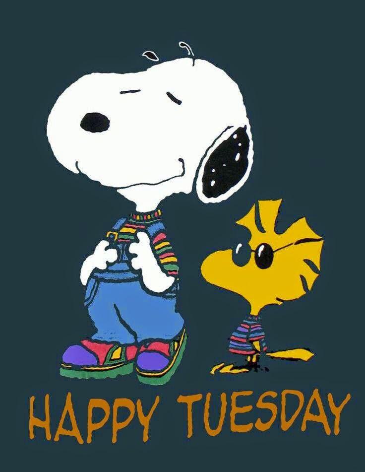 Happy Tuesday, part 4